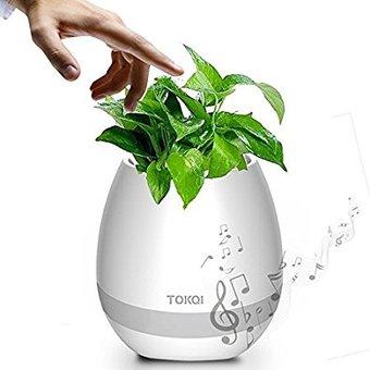 1 pot ? fleurs lumineux musical